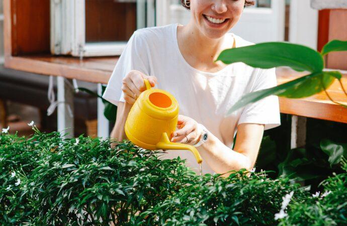 Diverse sätt att piffa upp sin trädgård